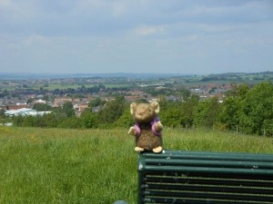 Mousie in the West Riding
